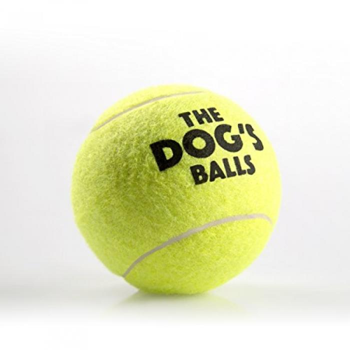 Kong pelota de tenis mascot